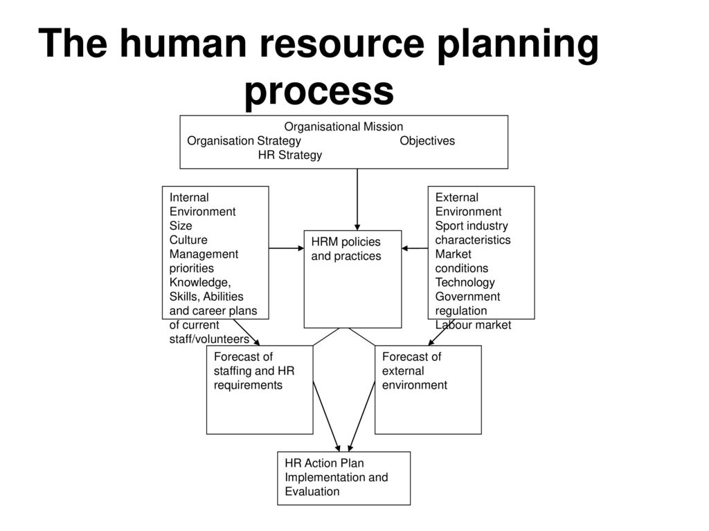 Managing people in sport organisations a strategic human resource the human resource planning process pooptronica