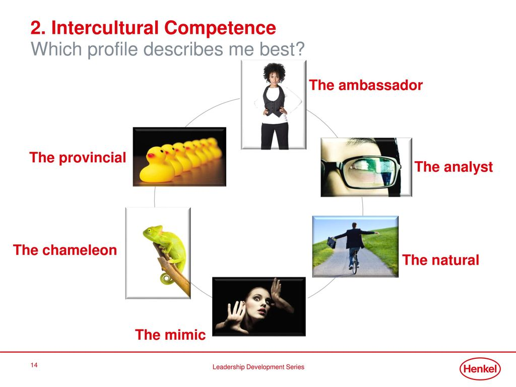 2. Intercultural Competence Which profile describes me best