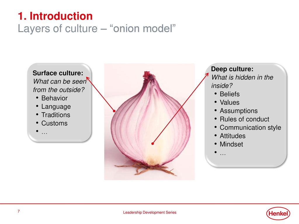 1. Introduction Layers of culture – onion model