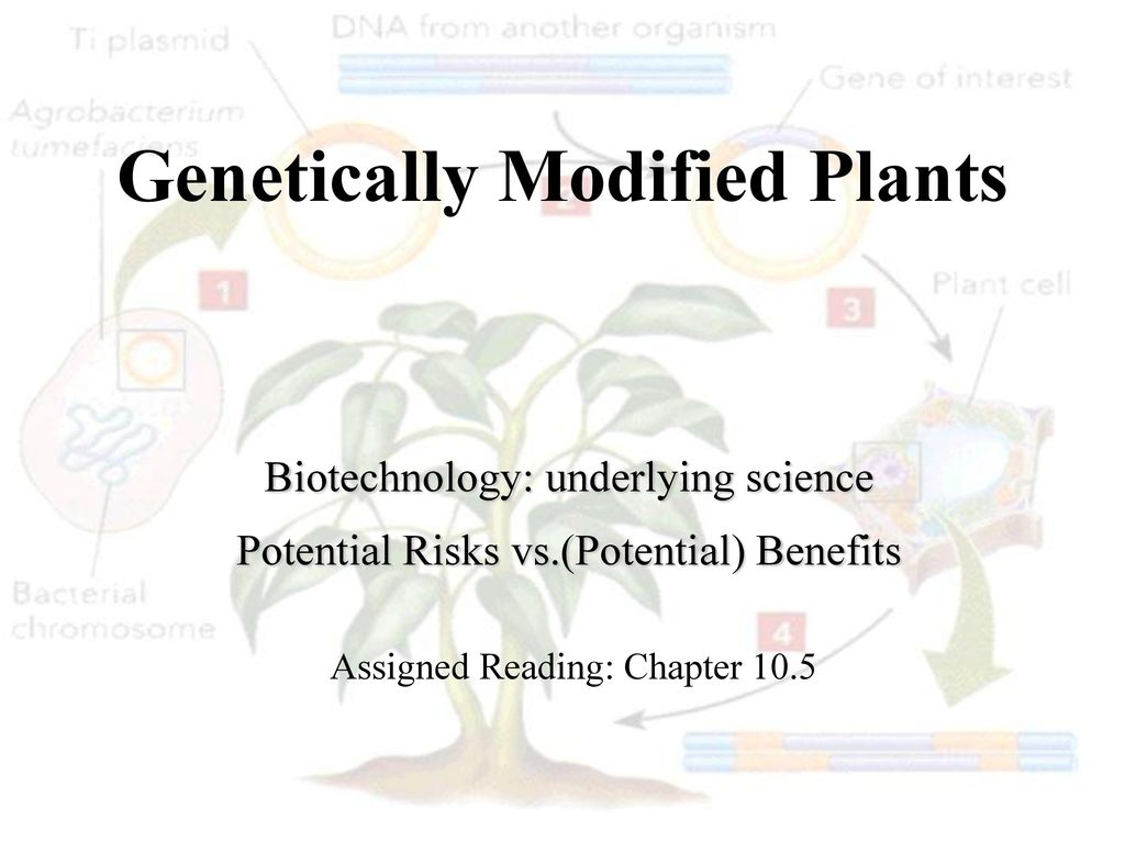 Potential benefits and costs of genetically