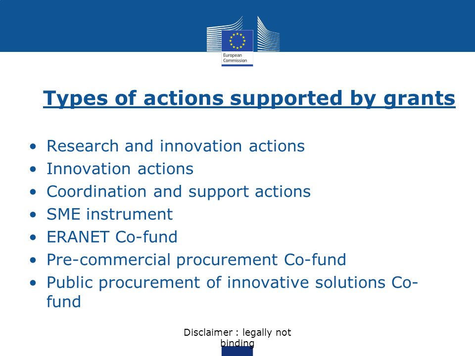 Types of actions supported by grants