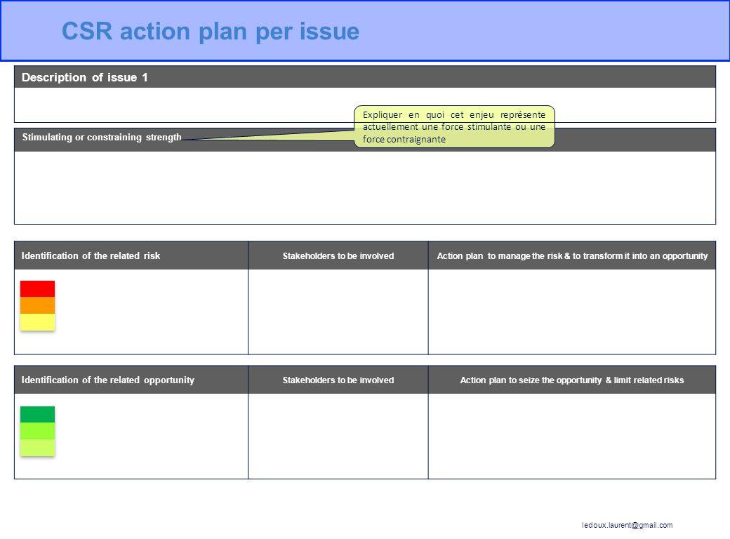 CSR action plan per issue
