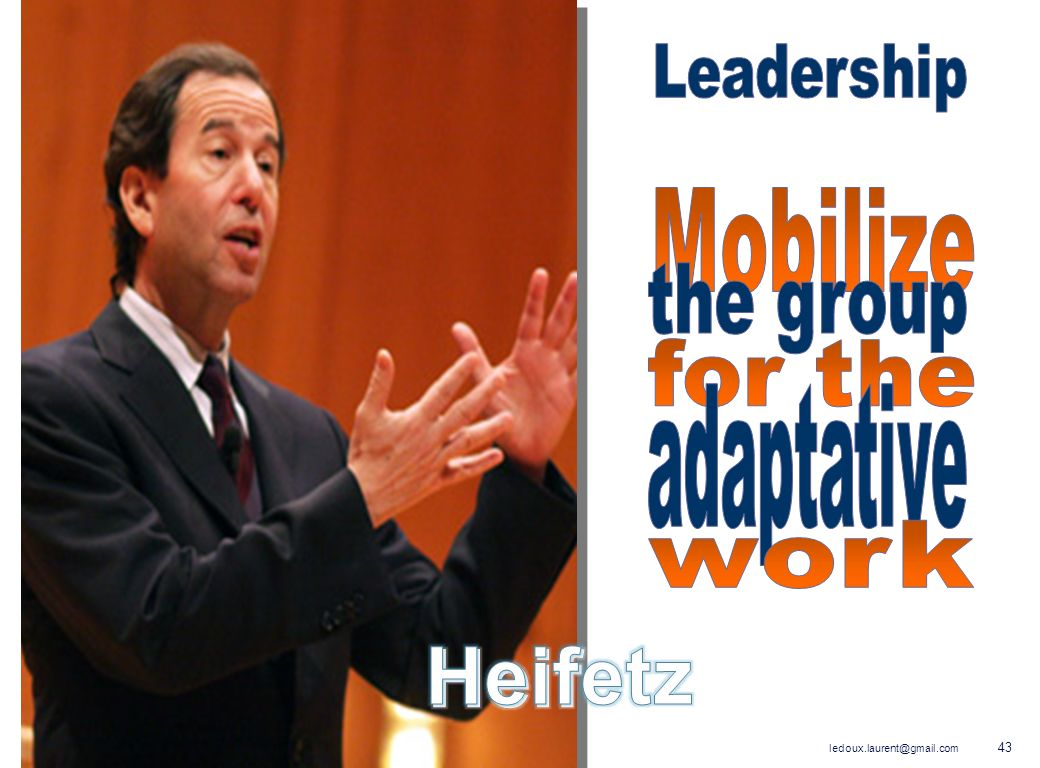 Leadership Mobilize the group for the adaptative work Heifetz