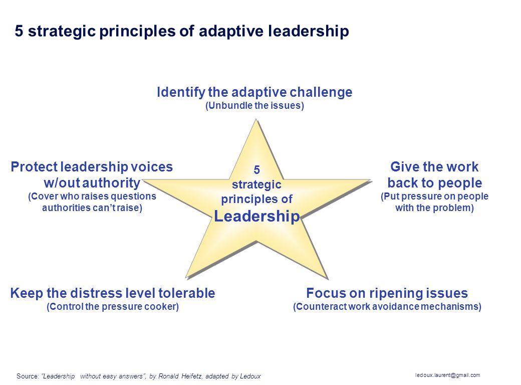5 strategic principles of adaptive leadership