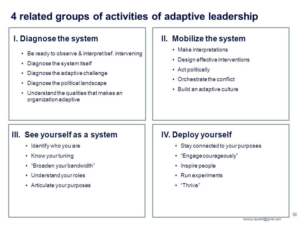 4 related groups of activities of adaptive leadership