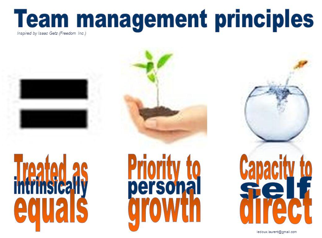 Team management principles