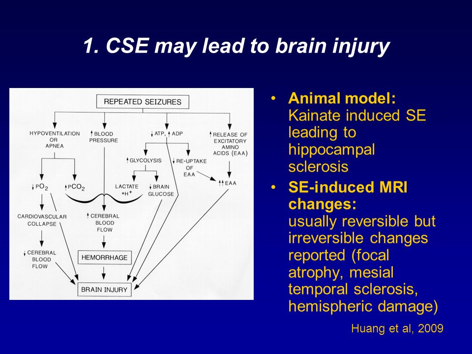 1. CSE may lead to brain injury