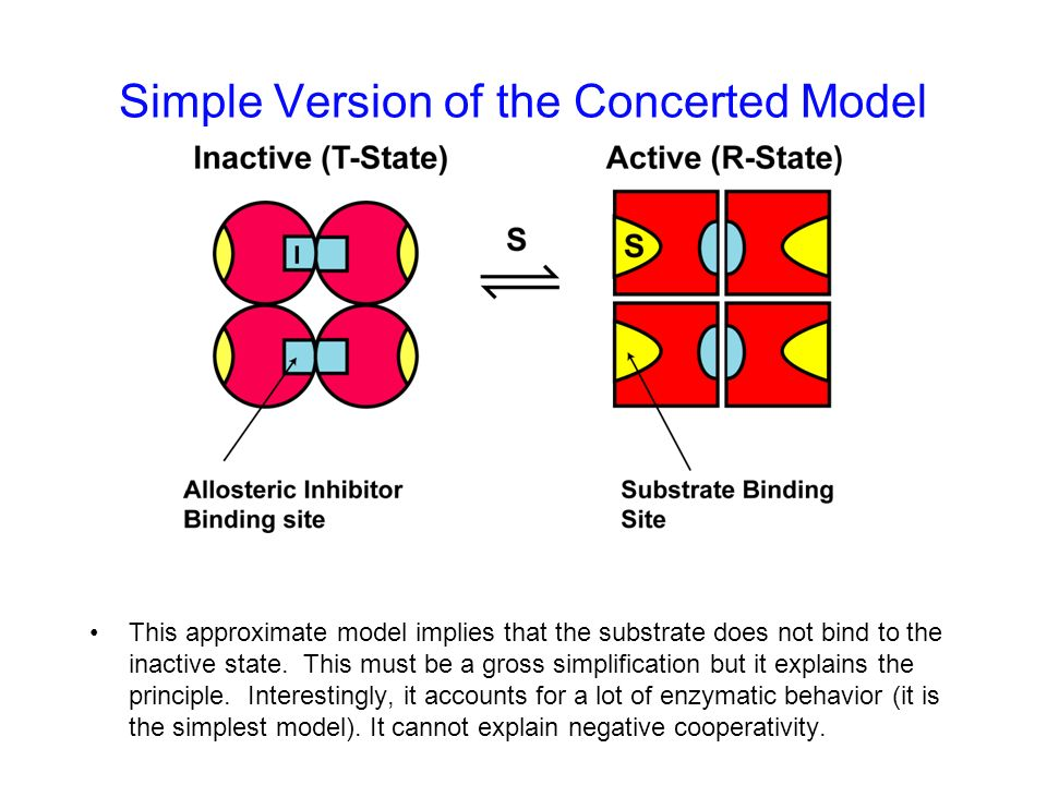 Simple Version of the Concerted Model