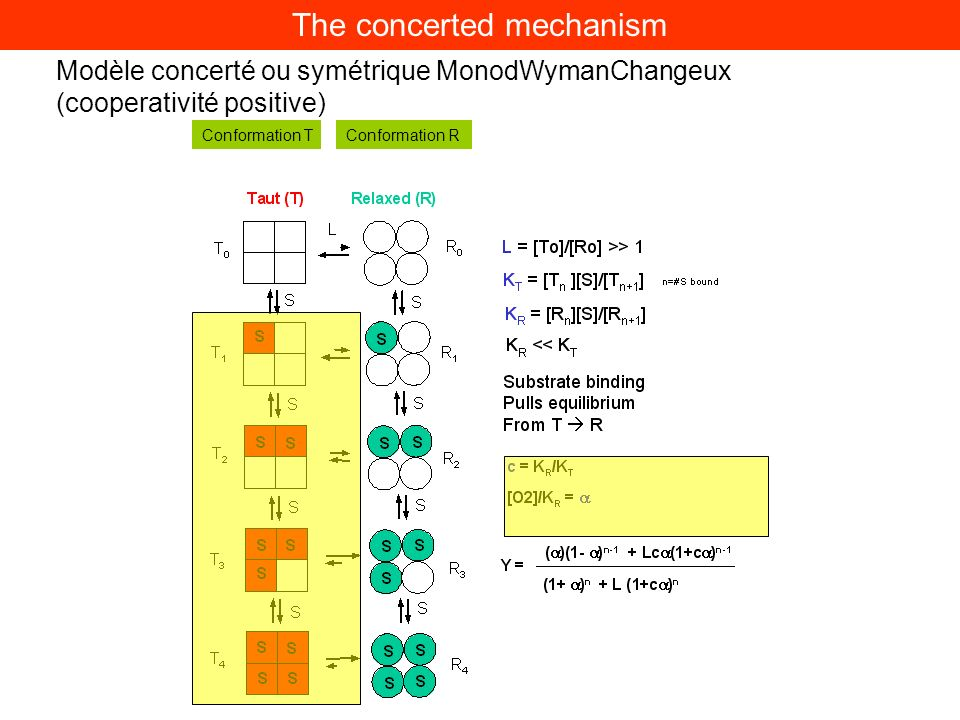 The concerted mechanism