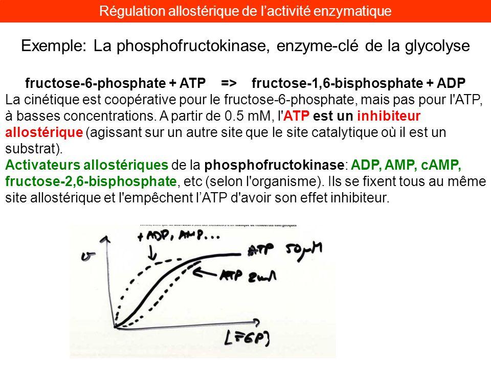 fructose-6-phosphate + ATP => fructose-1,6-bisphosphate + ADP