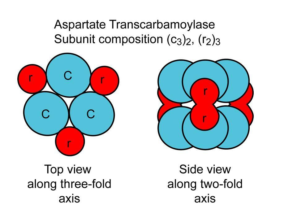 ATCase Subunit Composition