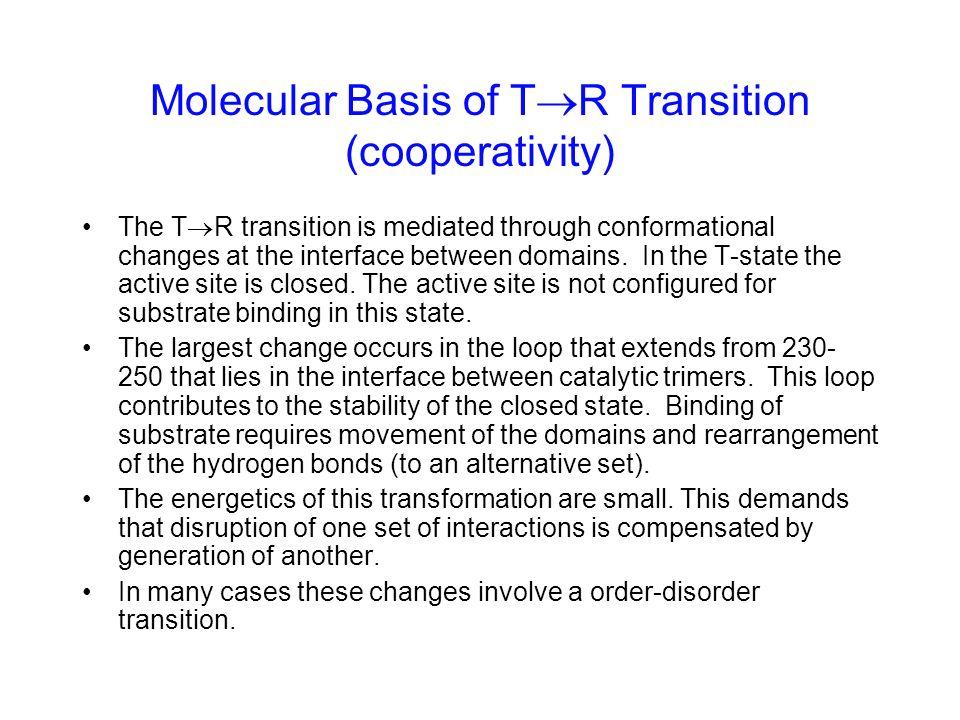 Molecular Basis of TR Transition (cooperativity)