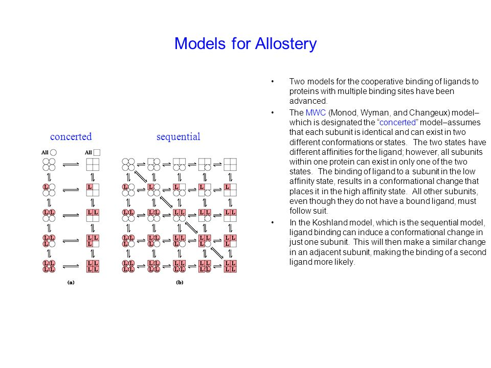 Models for Allostery concerted sequential