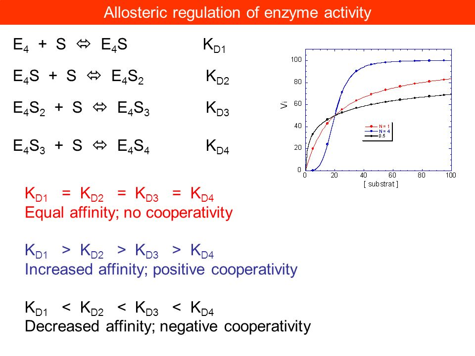 Allosteric regulation of enzyme activity
