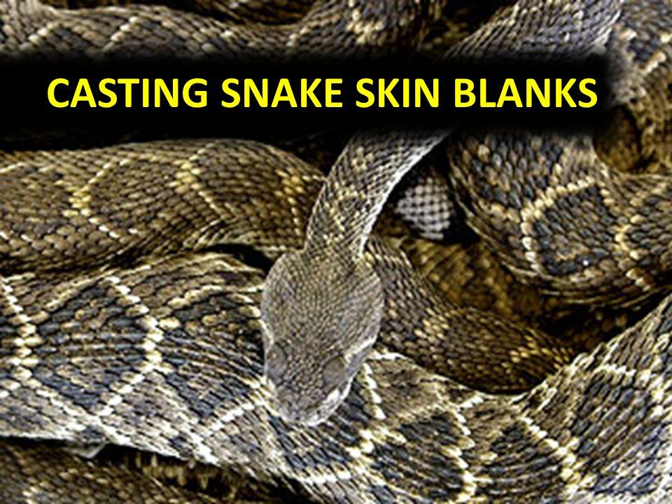CASTING SNAKE SKIN BLANKS