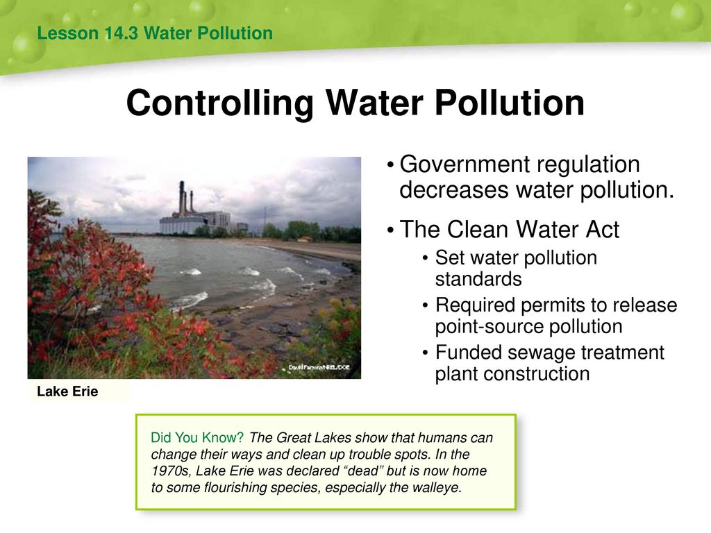 the government and pollution Reducing pollution there are many things you can do to reduce your impact on the environment if we all use energy,  what government is doing.