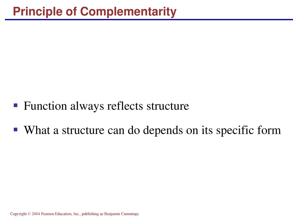 Amazing Principle Of Complementarity Anatomy And Physiology Gallery ...