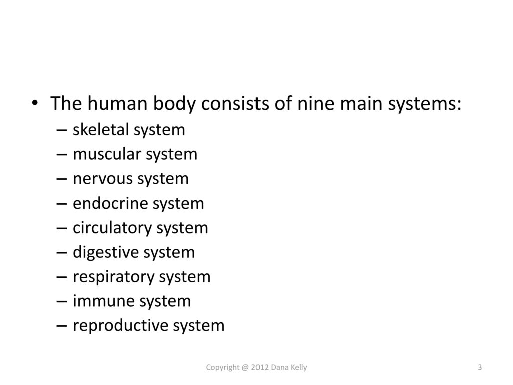 Human Anatomy & Physiology Trivia - ppt download