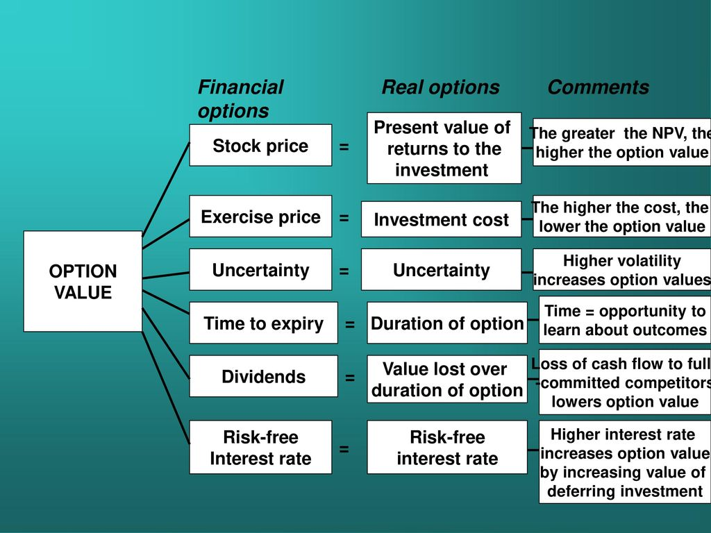 True cost of stock options