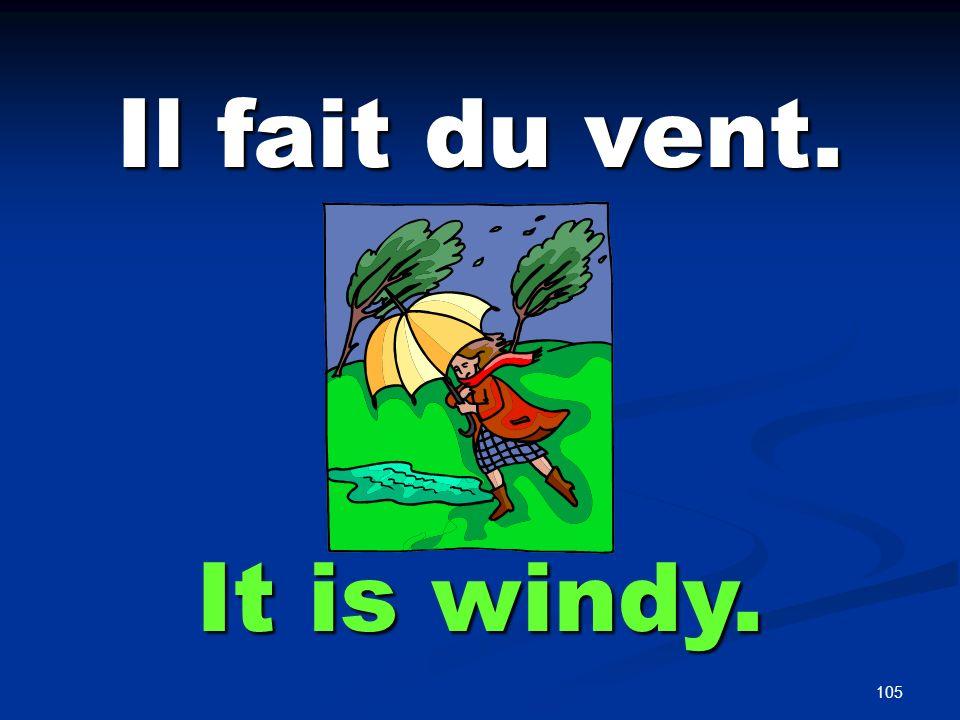 Il Pleut. It is raining.