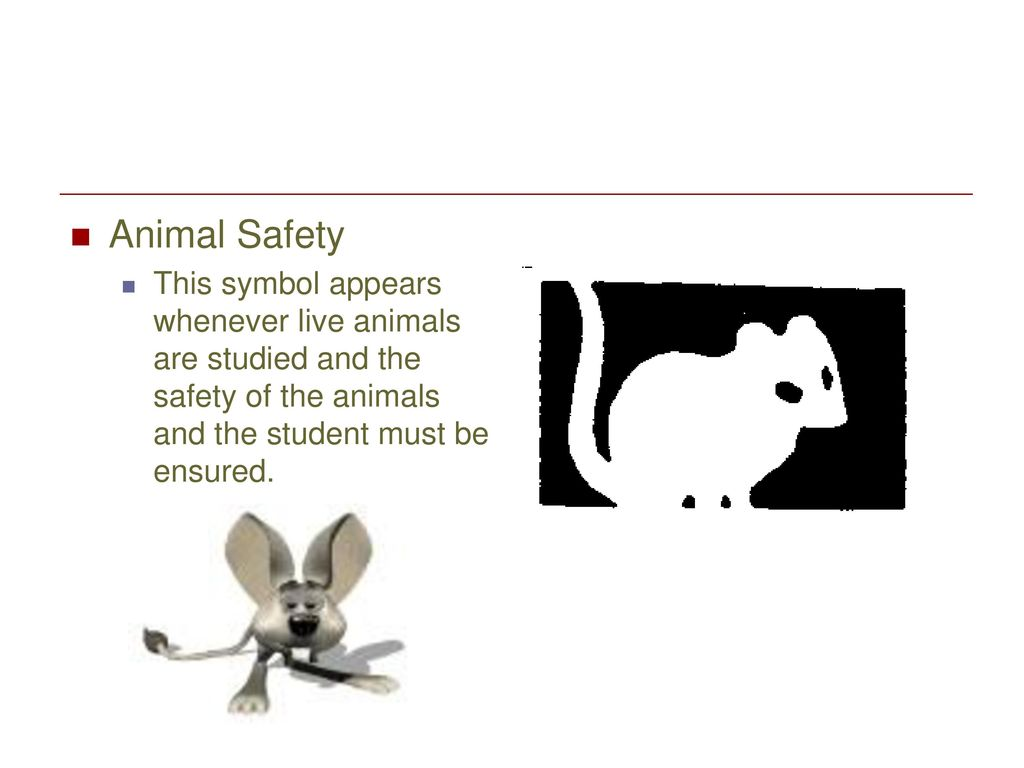 Safety symbols ppt download 7 animal safety this symbol appears whenever live animals are studied and the safety of the animals and the student must be ensured buycottarizona Choice Image