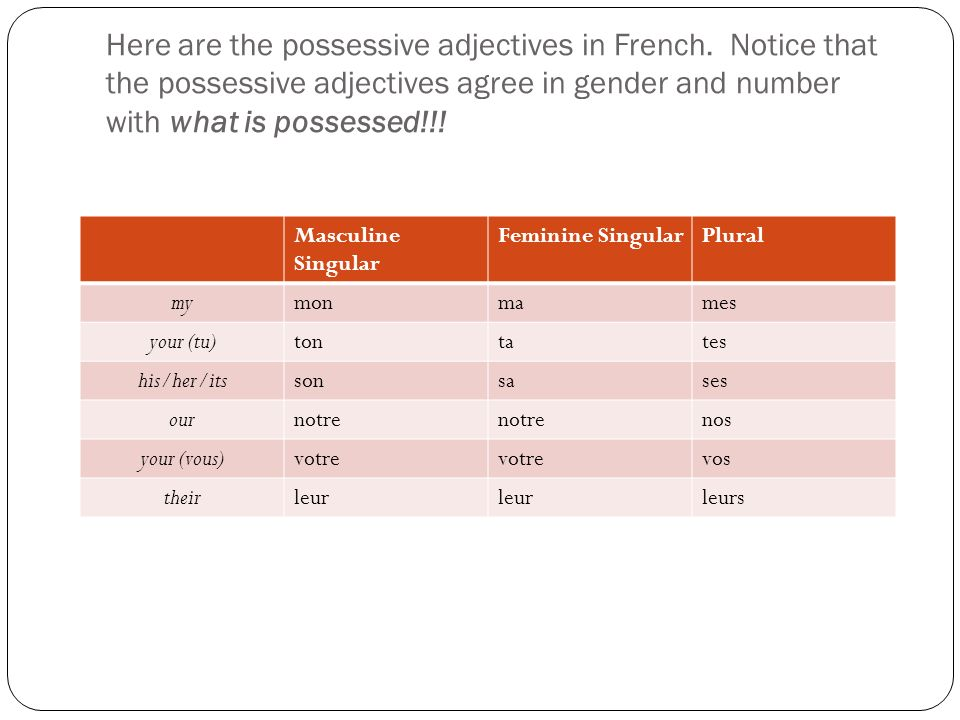 Here are the possessive adjectives in French