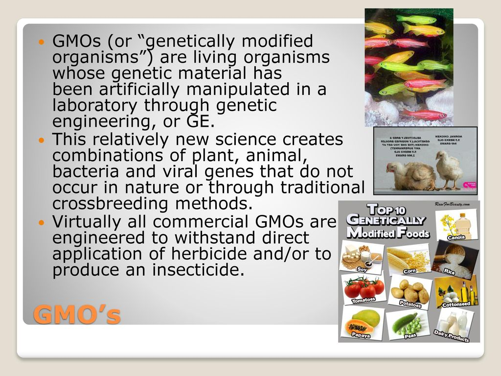 application of plant genetic engineering pdf
