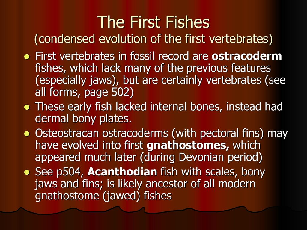 the evolution of fish vertebrates begin Vertebrate evolution has been punctuated by three episodes of widespread gene or genome duplication, which have been linked with the origin of vertebrates, gnathostomes and teleosts, respectively.