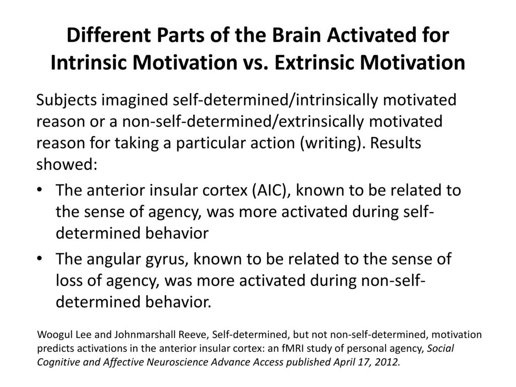 intrinsic and extrinsic motovation Balance intrinsic and extrinsic motivation for success this is an excerpt from inside sport psychology by costas i karageorghis and peter c terry.