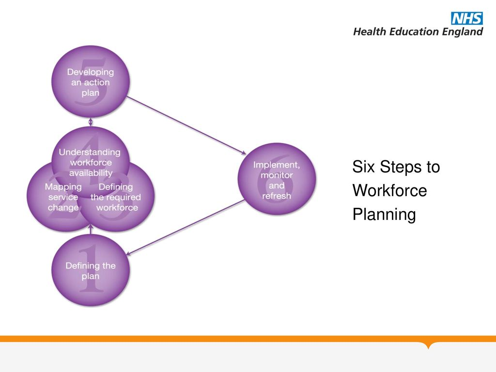 1 Introduction To Workforce Planning And Development In