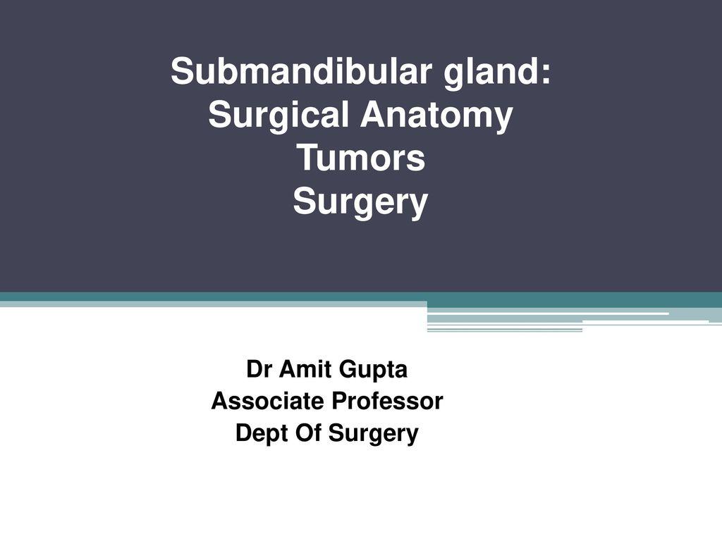 Submandibular gland: Surgical Anatomy Tumors Surgery - ppt video ...