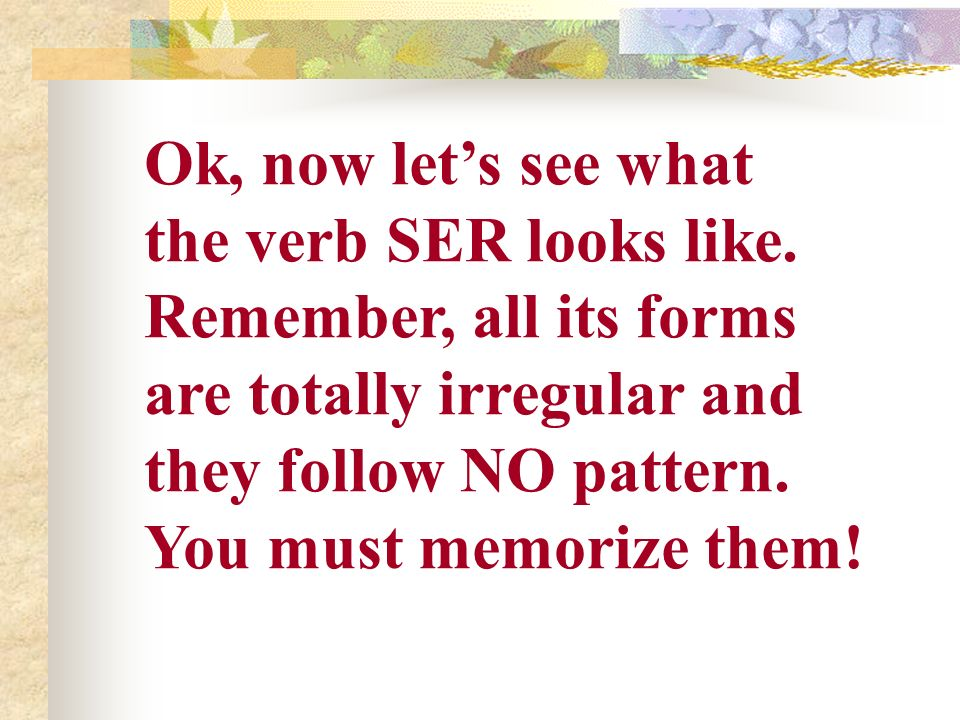 Ok, now let's see what the verb SER looks like. Remember, all its forms. are totally irregular and.