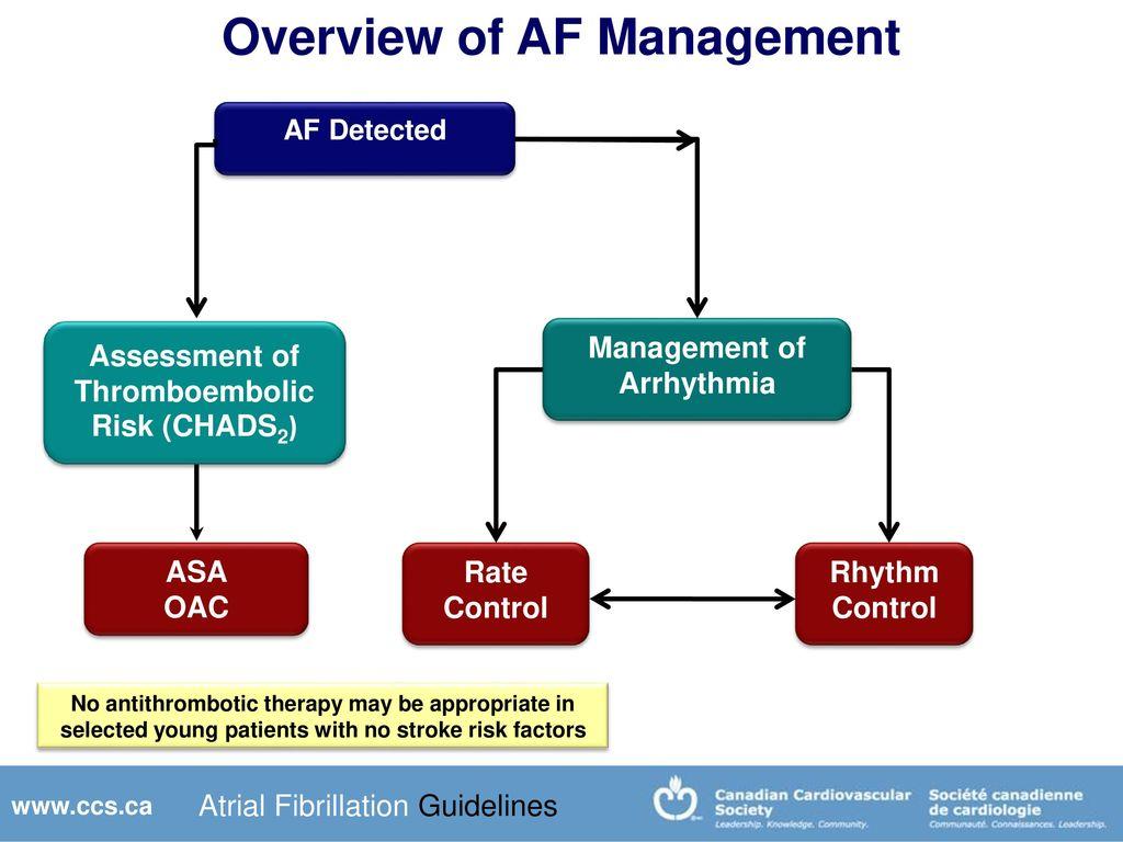 stroke management guidelines 2014 pdf