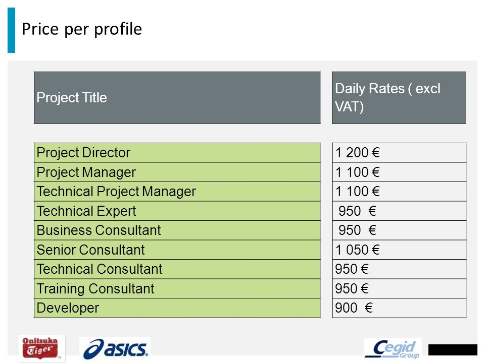 Price per profile Project Title Daily Rates ( excl VAT)