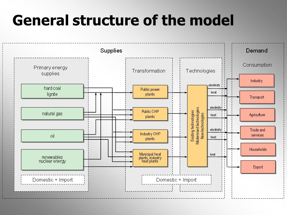General structure of the model