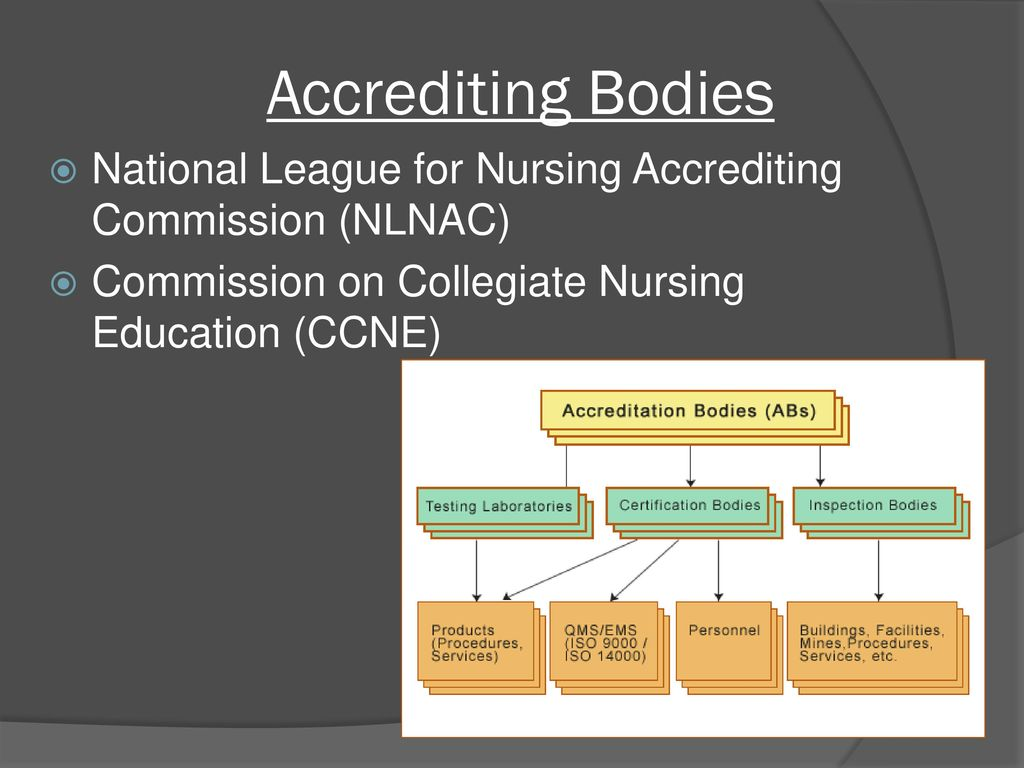 Trends and issues in contemporary nursing education ppt video 11 accrediting bodies national league for nursing accrediting commission nlnac commission on collegiate nursing education ccne xflitez Images