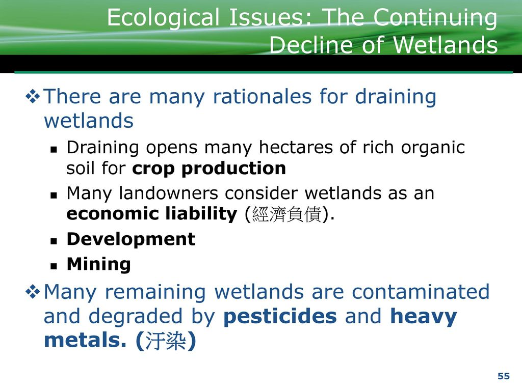 ecological issues Articles discussing environmental issues of the  ecological problems - definition  ecological problems are maybe called ecological but ecology.
