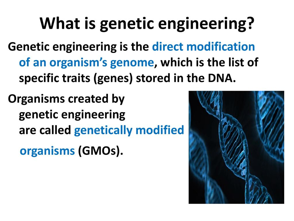 genetic engineering a boon or a curse Genetic engineering: boon or bane is science boon or curse the pursuit of knowledge carried on by scientists for the past several genetic engineering.
