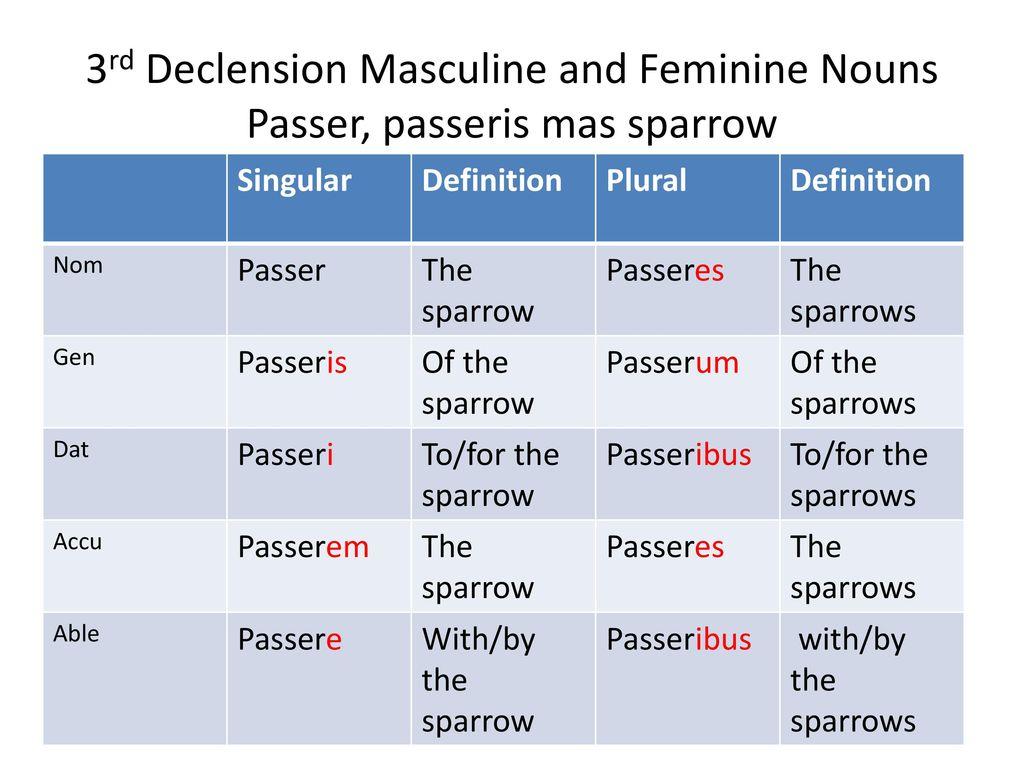 3rd Declension Masculine And Feminine Nouns Passer, Passeris Mas Sparrow