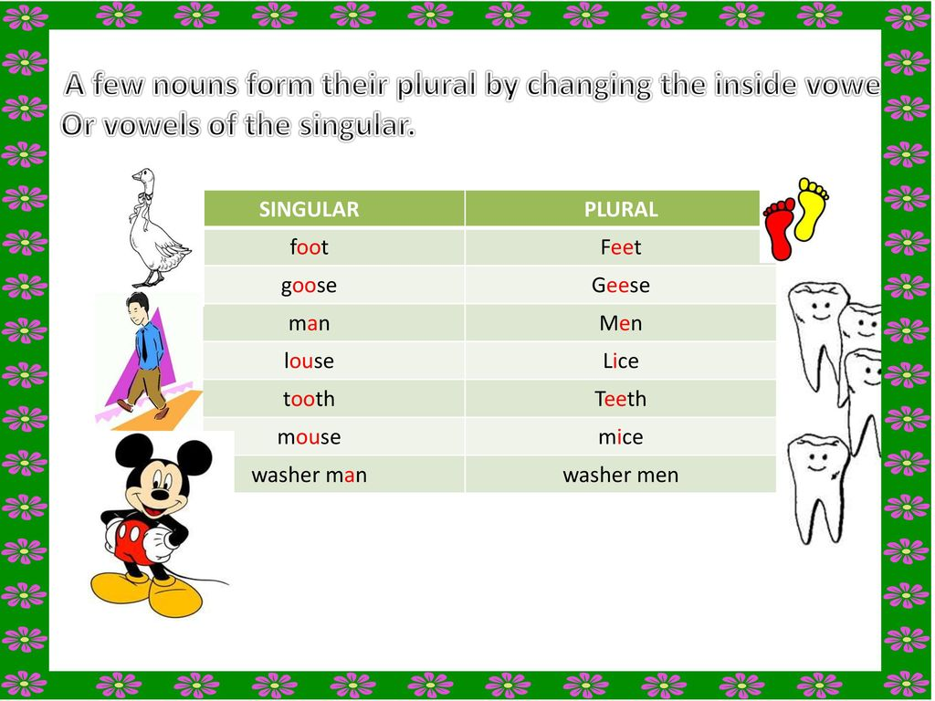 SINGULAR AND PLURALS FOR GRADE THREE &FOUR - ppt download
