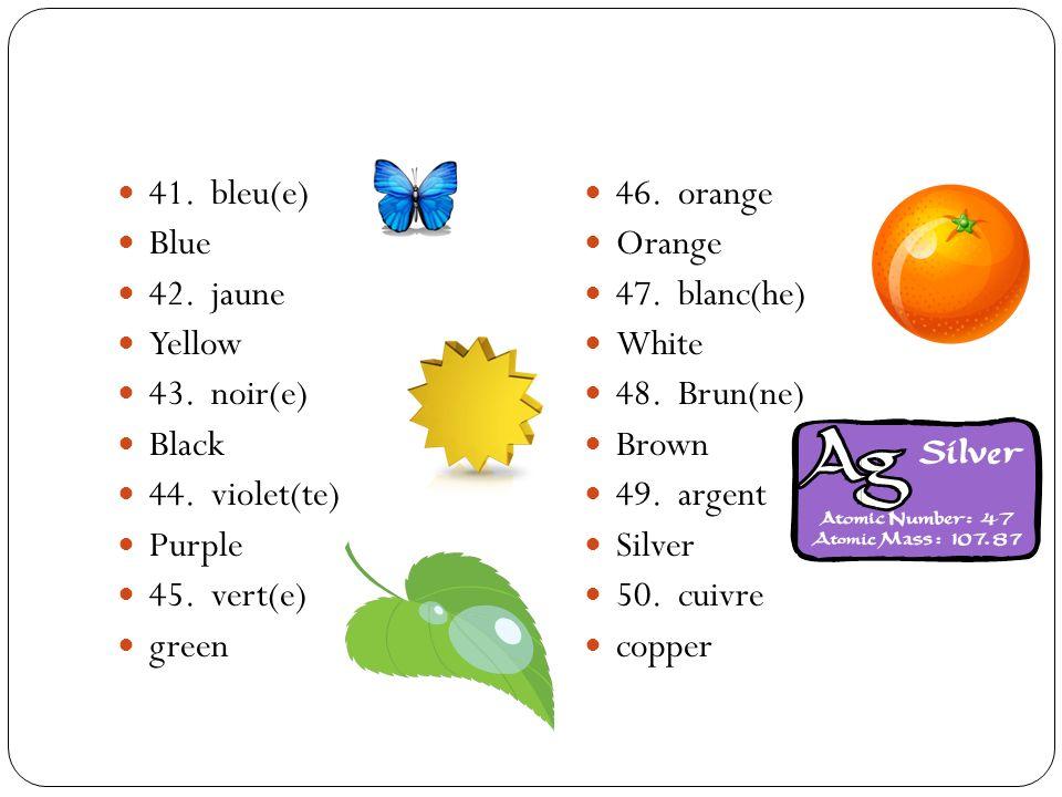 41. bleu(e) Blue. 42. jaune. Yellow. 43. noir(e) Black. 44. violet(te) Purple. 45. vert(e)