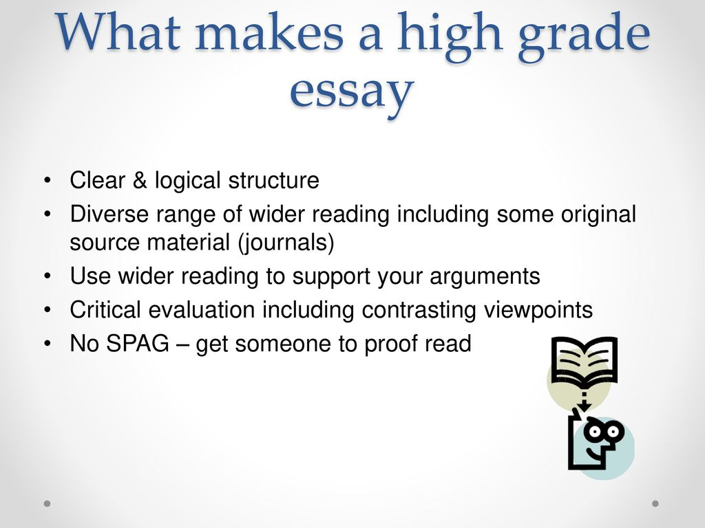 Other logical structure essay