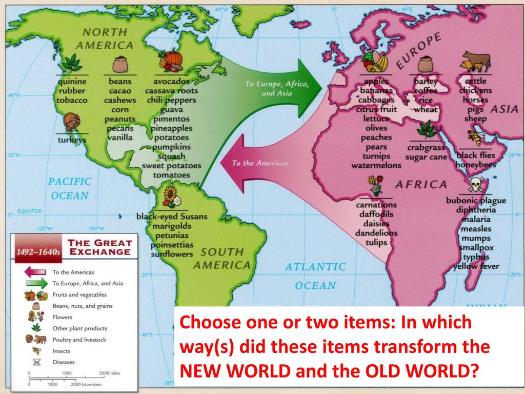 Choose one or two items: In which way(s) did these items transform the NEW WORLD and the OLD WORLD