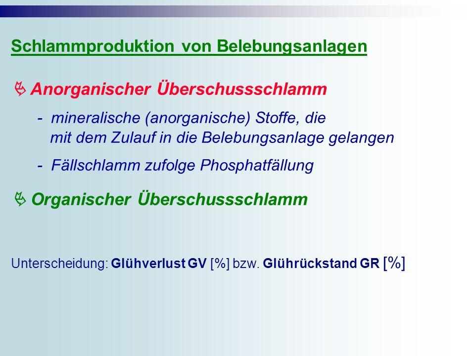 Schlammproduktion von Belebungsanlagen