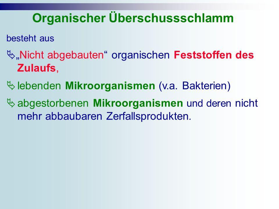 Organischer Überschussschlamm
