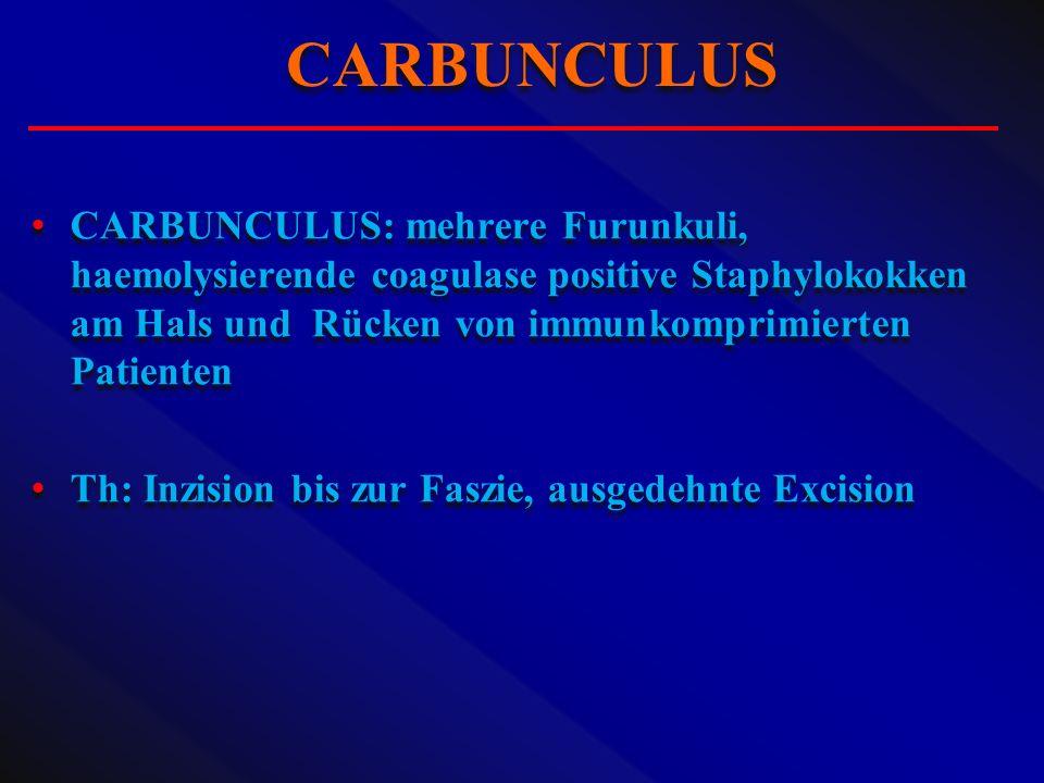 CARBUNCULUS CARBUNCULUS: mehrere Furunkuli, haemolysierende coagulase positive Staphylokokken am Hals und Rücken von immunkomprimierten Patienten.