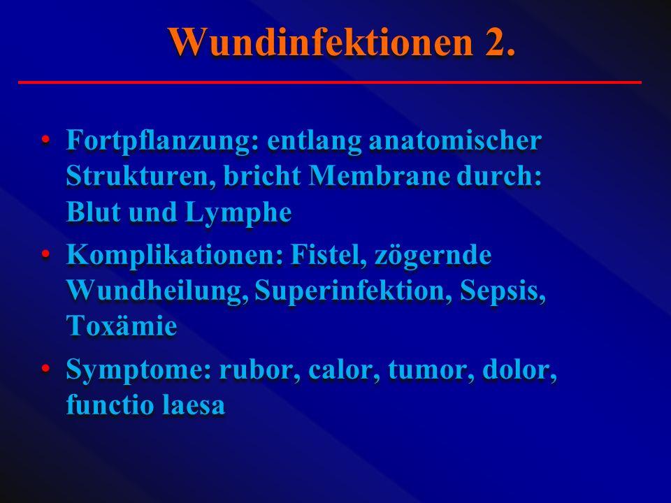Wundinfektionen 2. Fortpflanzung: entlang anatomischer Strukturen, bricht Membrane durch: Blut und Lymphe.