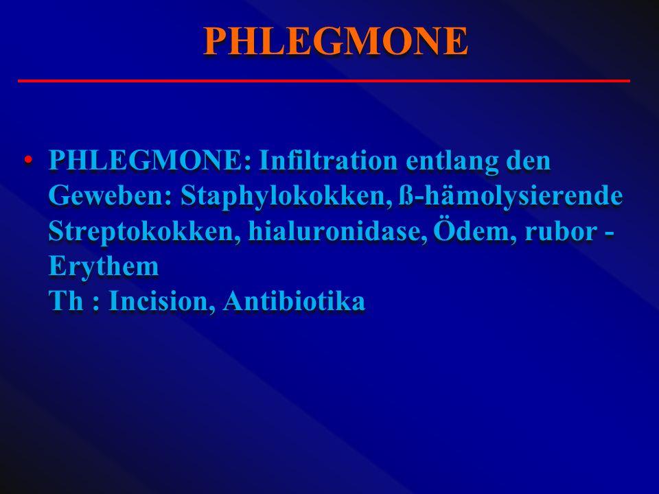 PHLEGMONE