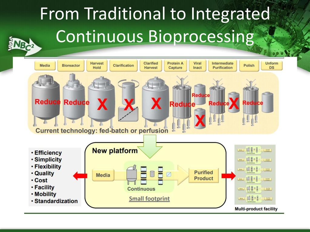 using batch and continuous cultures biology essay Exploitation of the advances in molecular biology will help to resolve  in growth  rate and environmental conditions in batch and continuous cultures  summary  of time taken for adaptation to serum free in cho cells using.