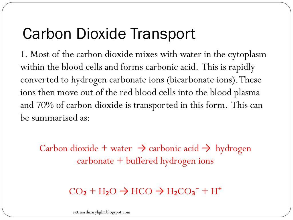 Biology in focus hsc course ppt video online download 14 carbon dioxide transport nvjuhfo Image collections